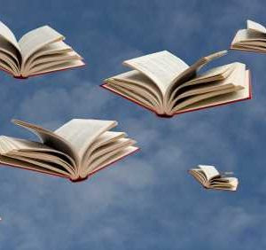 Books_in_flight